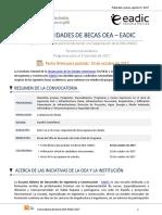 Convocatoria OEA EADIC 2017 2