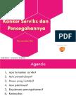 Cervical Cancer Laymen PPT - 26 March 2014 Final