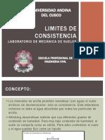 Limites de Consistencia - Expo