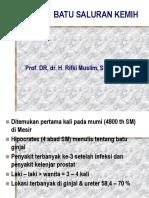Batu Saluran Kemih_prof.rifki