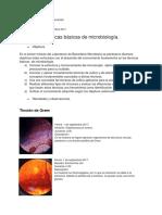 Previo_Equipo3_Informe1