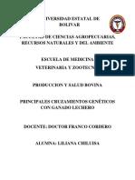principales cruzamientos genéticos con ganado lechero 11.docx
