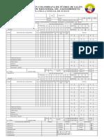 Planilla Oficial de Juego Conajuzfutsal 2011- 10 Faltas Acumulativas