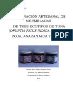tesis-analisisis f-q.pdf