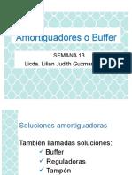 13 Soluciones Buffer
