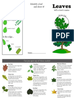 tree id brochure