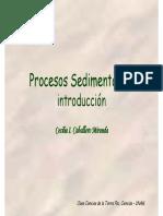 34a-Procesos%2520Sedimentarios.pdf