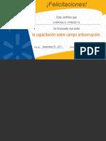 Anti-corruption FCC.pdf