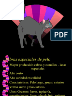 5 Fibras Text Proteicas