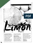 El Limon.pdf