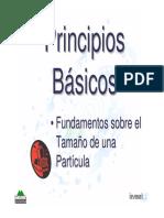 DIF-Fundamentos tam. de particula.pdf