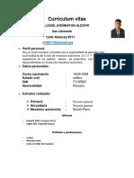 Rojas Luque Curriculum_vitae