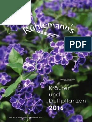 Ruehlemanns Kraeuterkatalog 2016
