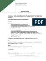 Lineamientos Para Protocolo de Tesis