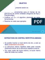 Estructura de Control Repetitivo Anidado.pdf