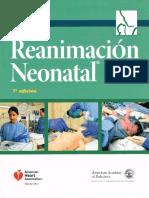 ReNeo 7ma.pdf