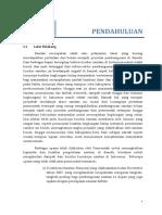 BPS BAB I Jayawijaya (tgl 29092015).docx