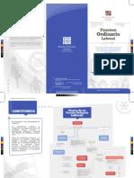 Triptico+Proceso+Ordinario+Laboral.pdf