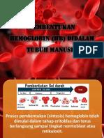 Pembentukan Hemoglobin (Hb) Didalam Tubuh Manusia