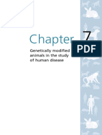 Animals Chapter 7 Genetically Modified Animals Human Disease