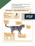 EJ_4_Gato domestico_Informar.pdf