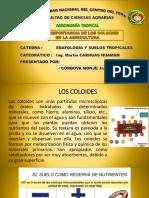 edafología COLOIDES 1