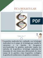 Genetica Molecular