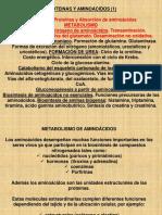 Metabolismo de Proteinas 1-2014.ppt
