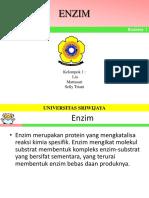 enzim[1]