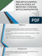 ADN Mitocondrial