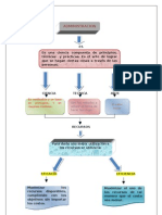 Mapa Conceptual Admin is Trac Ion