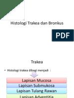 Histologi Trakea Dan Bronkus