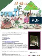 Ervas Medicinais Saber e Prática no Fazer Feminino.pdf