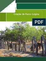 folder porco caipira intranet.pdf