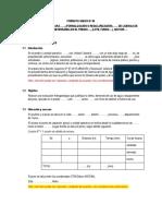 Formato Anexo Nº 06 - Desarrollado-Ana