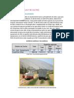 Aspectos Agricolas y de Cultivo