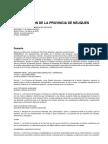 Constitucion de La Provincia de Neuquen