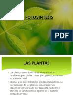 Diapos La Fotosintesis
