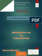 Metab. Carbo. Glucosa