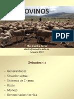 114546180-ovinos.pdf