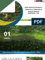 datos de pérdida de cobertura de los bosques húmedos amazónicos en el 2016
