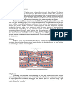 Struktur Dan Fungsi Epidermis
