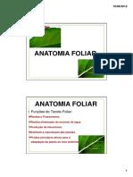 Aula Anatomia Foliar
