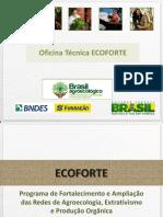 Apresenta o Oficina Edital Redes ECOFORTE 1