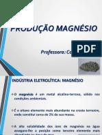 Indústria Eletrolítica Magnesio Final
