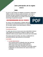 Enfermedades Principales de La Región Cusco