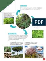 bio 10.pdf