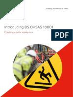 BS OHSAS 18001 Introduccion Web