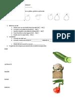 Testare inițială Cunoștințe despre mediu învățământ special, clasa a VI-a