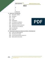 MEMORIA DESCRIPTIVA - CANAL.docx